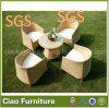 Outdoor Rattan Patio Wicker Garden Furniture Dining Set (7013RT)