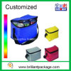 Promotional Insulated Cans Cooler Bag Picnic Lunch Cooler Bag