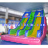 PVC Tarpaulin Inflatable Water Slide/Inflatable Water Slide with Water Pool