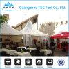 6X6m Festival Gazebo Carrefour Container Kiosk Tent with SGS