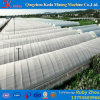 Multispan Commercial Plastic Film Tunnel Green House for Tomato