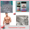 Effective Anabolic Steroid Powder Testosterone Cypionate for Muscle Building