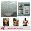 Muscle Gain Anabolic Steroid Powder Boldenone Acetate