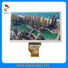 7 Inch 800 (RGB) X 480 TFT LCD