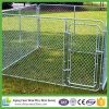 6ft High Galvanized Chain Link Dog Run