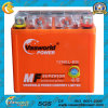 Motorcycle Battery 100% Gel Hot Sale Market 12V 5ah Gel Motorcycle Battery