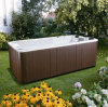 Chinese-Made Acrylic Swimmjavascript: Void (0) Ing Outdoor Family SPA Jy8603