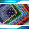 Paisley Pattern Cheap Cotton Custom Bandana for Sale (B-NF20F19004)