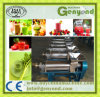 Stainless Steel Spiral Fruit Juice Extractor
