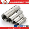 Stainless Steel A2, A4 Drop in Anchor (M6~M20)