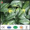 IVY Leaf Plastic Garden Fence Artificial Plant
