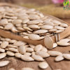 Green Shine Skin Pumpkin Seeds with Biggest Size
