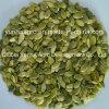 Chinese Pumpkin Seed Kernels Peeled