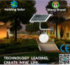 Low Price Monocrystal Panel LED Solar Light for Outdoor