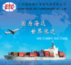 One-Stop Shipping Logistics Service From Greater Pearl River Delta/Nansha/Shenzhen to India by Maersk