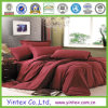 New Brushed Egyptian Cotton Microfiber Bed Sheet, Bedding Sets