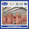 Cold Room for Beef and Meat