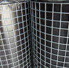 Hot Sale 20X20 Hot Dipped Galvanized Welded Netting After Welding