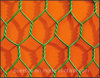 2015 China PVC Coated Iron Hexagonal Wire Mesh
