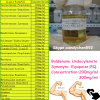 Equipoise Injectable Oil Boldenone Undecylenate (Concentration: 200mg/ml)