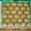 Exported Quality Chinese Fresh Green Kiwi Fruit