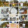 Powder-Injection Test Blend Sustanon 250 or 100 for Muscle Increase