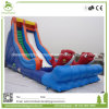 Commercial Inflatable Water Slide with Small Pool for Sales Craigslit