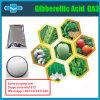 Plant Growth Regulator Gibberellin Ga3 High Purity Gibberellic Acid