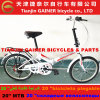 """Tianjin Gainer 20""""Folding Bicycle/ Foldable Bicycle"""