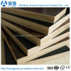 18mm Black/ Brown Film Faced Plywood for Construction