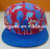 2014 Tingwell Hot Sale New Era Shape Flat Bill Cap