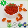 Green Wrold Sea Buckthorn Extract Digestion Tablets