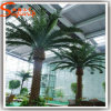 China Supply Decorative Outdoor Artificial Plastic Palmtree