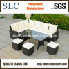 Garden Furniture, Rattan Garden Furniture, Garden Set (SC-A7621)