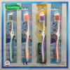 Soft Nylon Adults Toothbrush with Gum Massage