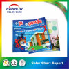 High Quality Professional Brochure Printing Services for Color Chart