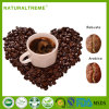 2017 New Arrival Maca Power Plus Coffee for Male Health