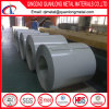 China Competitive Price Hot Selling PPGI Steel Coil