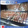 African Top Selling Chicken Poultry Farm Equipment / Egg Laying Cage