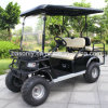 4 Seater Electric Dune Buggy