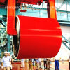 Color Galvanized Steel PPGI Steel Coil /Gi Plate