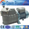 Fcp Series Filter Centrifugal Pump for Cleaning Swimming Pool