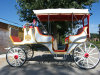 Exquisite Deluxe Wedding Royal Victoria Horse Cart Carriage with Hood