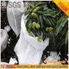 Factory Supply Anti-UV Eco-Friendly Biodegradable Agricultural Fabric