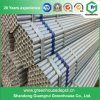 High Quality Venlo Type PC/Polycarbonate Sheet Greenhouse Steel Structure