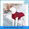 Factory New Design Luxury Pet Dog Clothes with Collar