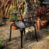 Antique Finish Most Popular Outdoor Garden Chair with Cast Aluminum Frame