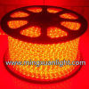 The Latest 5050-5m-300SMD IP65 DC12V Waterproof Cheap LED Strip