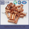 L12 6.35X19.1mm Copper Color Flat Countersunk Head Semi Tubular Steel Rivet