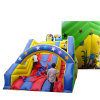 Star Hot Sale Design Inflatable Slide, China Factory Inflatable Water Slider